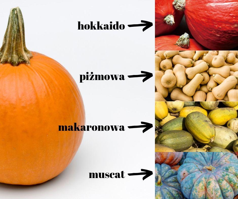 rodzaje dyń zwyczajna hokkaido piżmowa makaronowa muscat